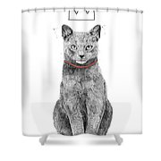 King Of Everything Shower Curtain
