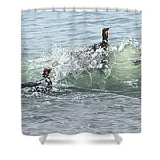 King Penguins Swimming In The Waves Shower Curtain by Alan M Hunt