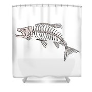 King Salmon Skeleton Drawing Shower Curtain