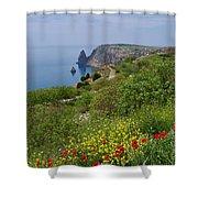 Crimea View, Fiolent Shower Curtain