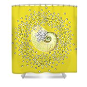 Lacy Look Shell Shower Curtain