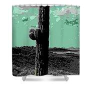 Lake Pleasant Az 044a Shower Curtain
