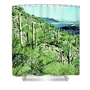 Lake Pleasant Az 045a Shower Curtain