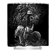 Lamb Shower Curtain by Clint Hansen