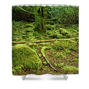 Landscape At Torc Waterfalls Shower Curtain