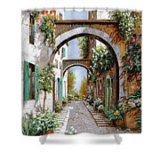 L'arco Dell'angelo Shower Curtain