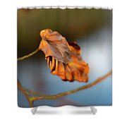 Last Leaves Of Autumn Shower Curtain by Scott Lyons