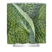 Laughing Leaves Shower Curtain