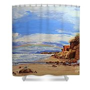 Laurens Lincoln City Shower Curtain