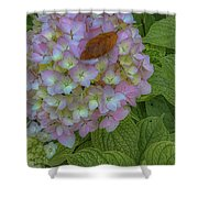 Leaf And Pink Shower Curtain