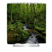 Lee Falls Cascades Shower Curtain