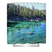 Let's Get Naked  Shower Curtain by Sean Sarsfield