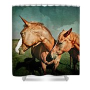 Life Partners Shower Curtain