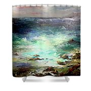 Light Of The Silvery Moon Shower Curtain