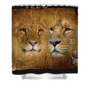 Lions No 02 Shower Curtain