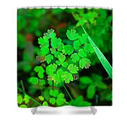 Little Patches Of Color  Shower Curtain