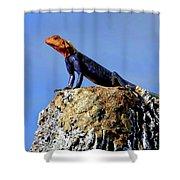 Lizard Lips Shower Curtain