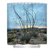 Lone Bush - Sunrise Shower Curtain