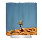 Lone Tree Big Sky Shower Curtain