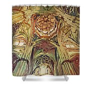 Looking Up Salamanca Cathedral Shower Curtain