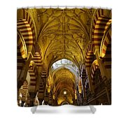 Looking Up Within The Cordoba Mezquita Shower Curtain