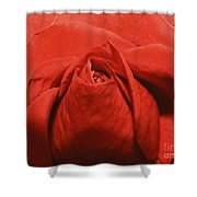 Love Grows Shower Curtain