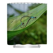 Love On A Leaf Shower Curtain