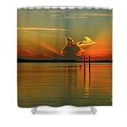 Low Flying Pelican Sunrise Shower Curtain