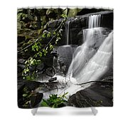 Lumsdale Falls 10.0  Shower Curtain