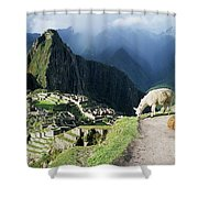 Machu Picchu And Llamas Shower Curtain