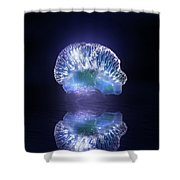 Man O' War Shower Curtain