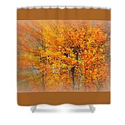 Maple Focal Zoom Shower Curtain