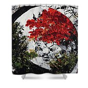Maple Tree 2 201908 Bonsai Penjing Museum National Arboretum Shower Curtain