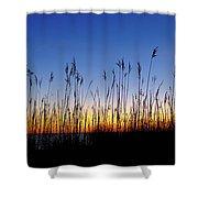 Marsh Grass Silhouette  Shower Curtain by Jeff Sinon