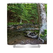 May Morning At The Coxing Kill Shower Curtain