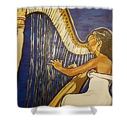 May The Strings Make You Smile Shower Curtain