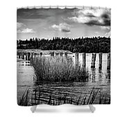 Mccormack's Beach Provincial Park, Black And White Shower Curtain