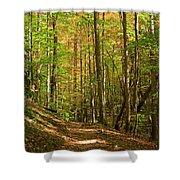 Meigs Creek Trailhead In Smoky Mountains National Park Shower Curtain