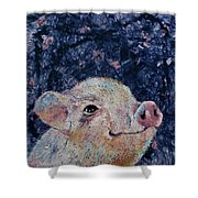 Micro Pig Shower Curtain