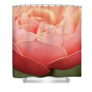 Midsummer Delight Shower Curtain by Emily Johnson