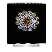 Minerva Glass Shower Curtain