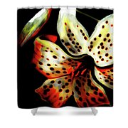 Miss Lily Shower Curtain