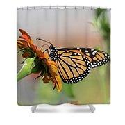 Monarch 2018-28 Shower Curtain