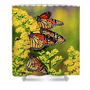 Monarch Gathering 2 Shower Curtain