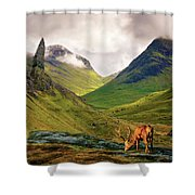 Monarch Of The Glen Shower Curtain