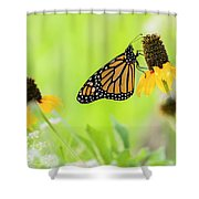 Monarch On Wildflowers Shower Curtain