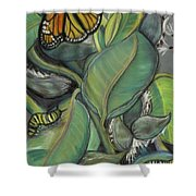 Monarch Series I Shower Curtain