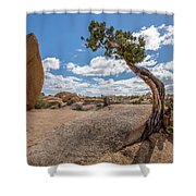 Monolith And Juniper Shower Curtain