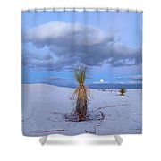 Moon And Soaptree Yucca, White Sands Shower Curtain