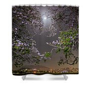 Moonlight And Magic Shower Curtain